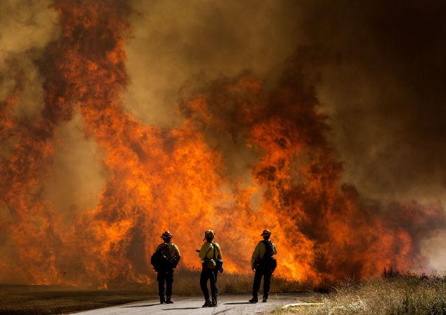加州森林火灾(资料图片)
