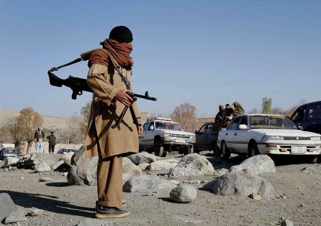 塔利班呼吁为外国军队工作的阿富汗公民不必担心自己的生命安全