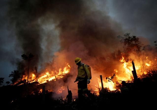 綠色和平:亞馬遜地區8月以來的起火數量創下10年之最