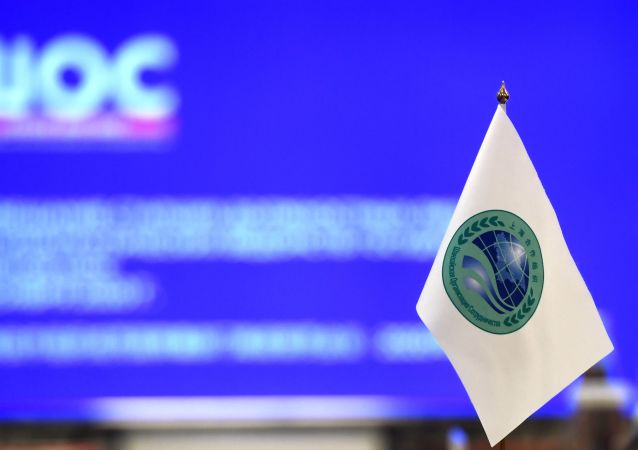 上合组织地方领导人论坛将于秋天在车里雅宾斯克举行