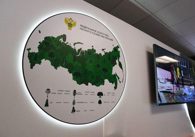 俄羅斯聯邦林業局