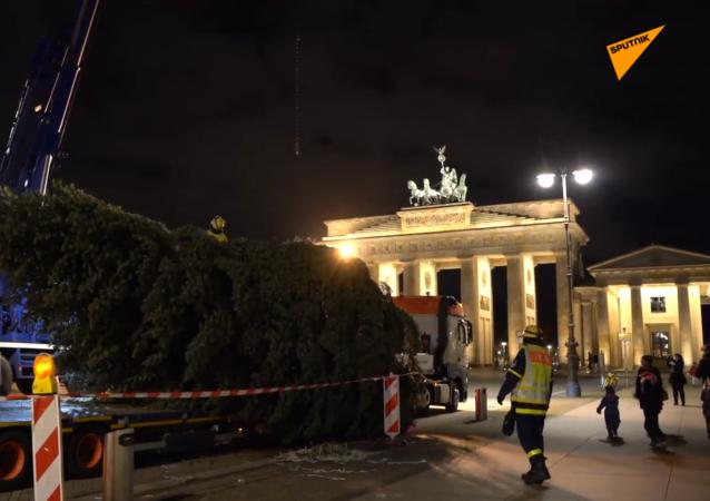 柏林市中心安裝聖誕樹 但不計劃舉辦慶祝活動