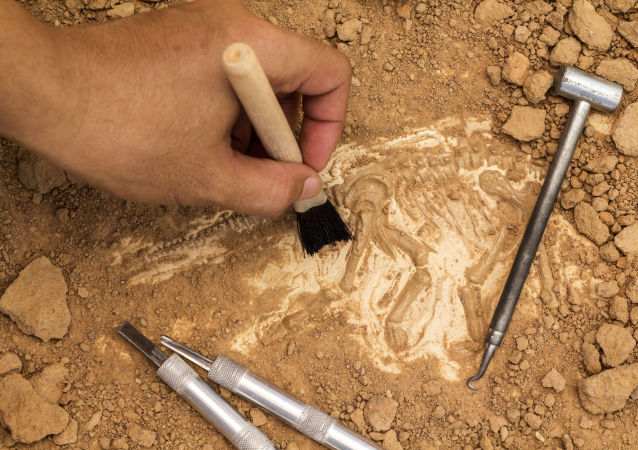 中国考古学家发现一个有5000年历史的装酒容器