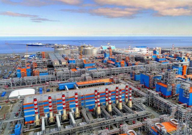 """俄副总理称欧洲本身对""""亚马尔-欧洲""""天然气管道感兴趣"""