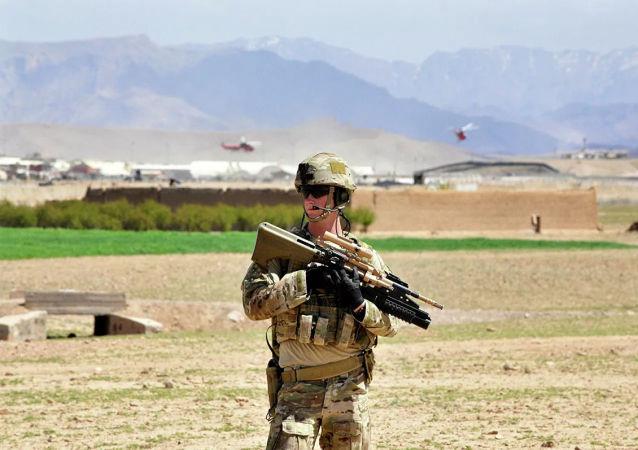 澳达利亚老兵纷纷焚烧奖章 敦促政府撤离曾向其提供帮助的阿富汗公民