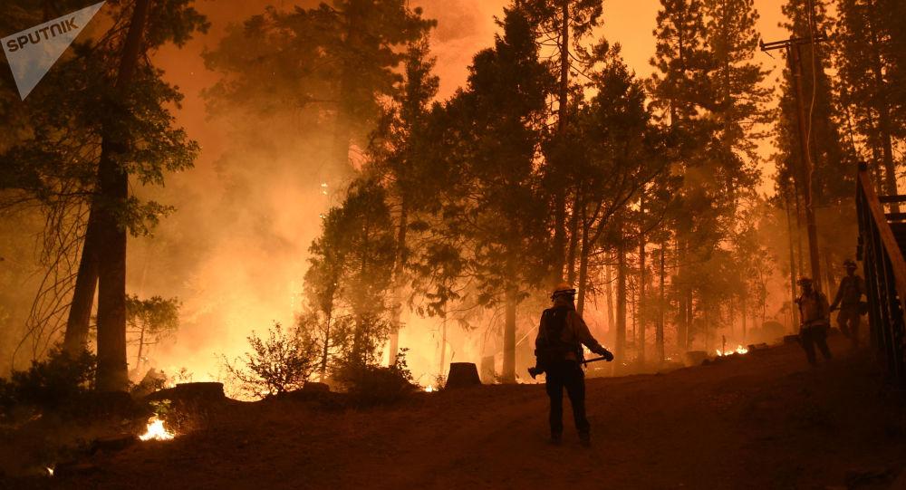 美國西部森林大火席捲50多萬公頃土地