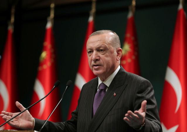 土耳其总统塔伊普·埃尔多安