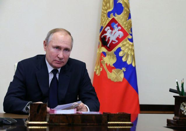 普京簽署有關對經濟實體內部腐敗人員追刑責的法律