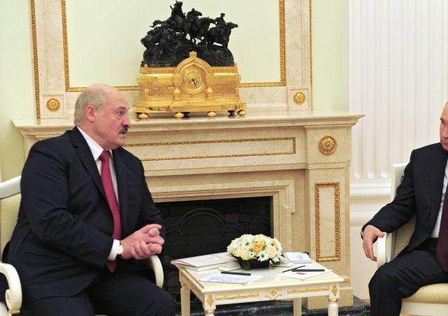 克宫:不排除俄白总统五月底将举行会晤