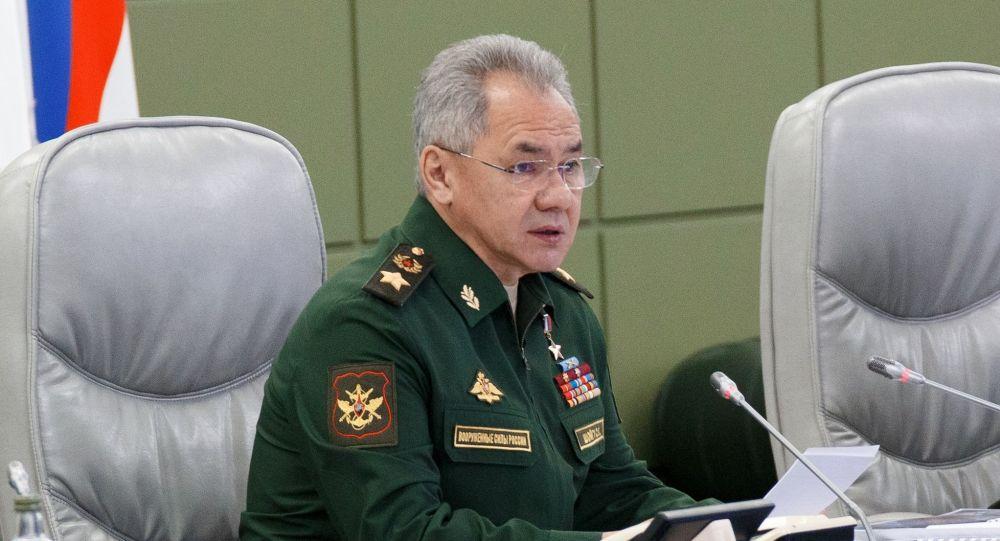 俄罗斯国防部长绍伊古大将