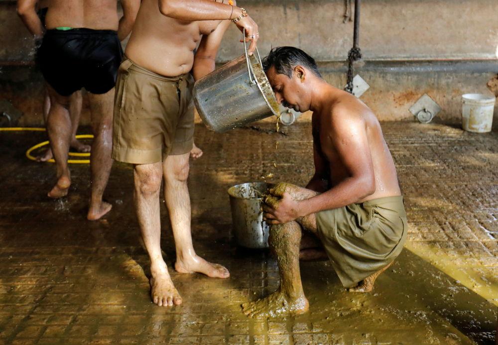 印度民眾烏達哈夫•巴赫齊亞用塗抹聖物牛糞的方法增強抵御新冠的能力。