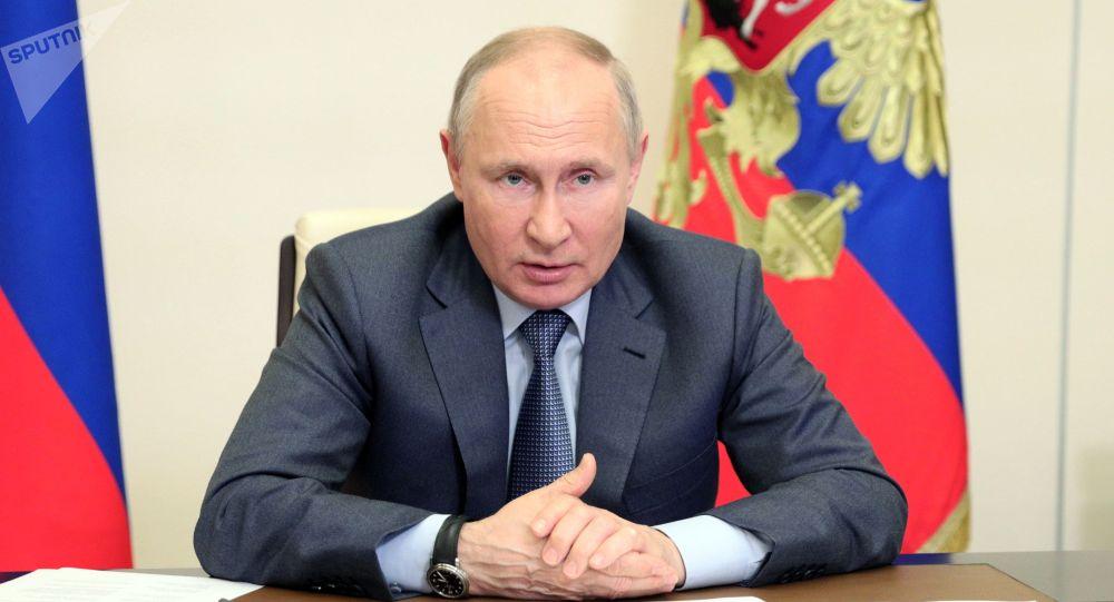 普京称世界战略稳定体系的退化令人担忧
