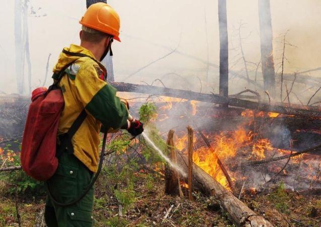 俄萨哈共和国政府:正在扑救8处林火 过火面积超400公顷