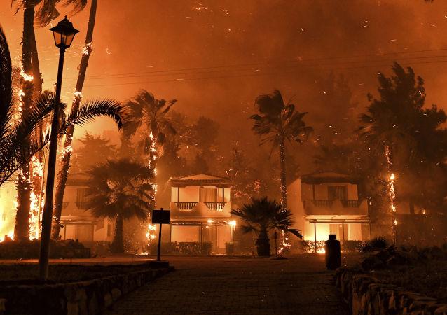 希臘雅典西側森林大火已得到控制