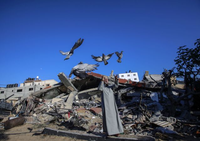 在废墟中生活的加沙居民。