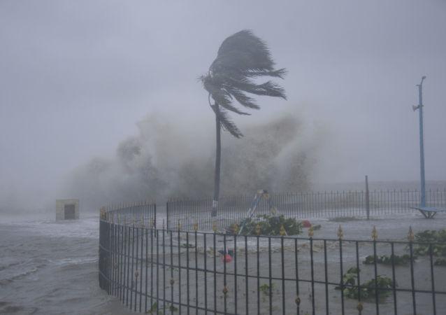 """媒体:印度遭气旋风暴""""亚斯""""袭击造成5人死亡"""