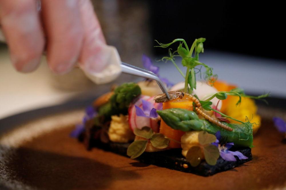 法国主厨劳伦•韦耶把蟋蟀摆放在菜肴上。