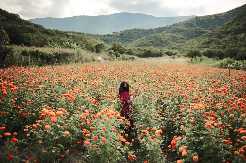 墨西哥攝影師Elipe Mahe拍攝作品《瑪利亞·埃列娜》入圍安德烈·斯捷寧攝影大賽「肖像,當代英雄,單張作品」 類評選名單。
