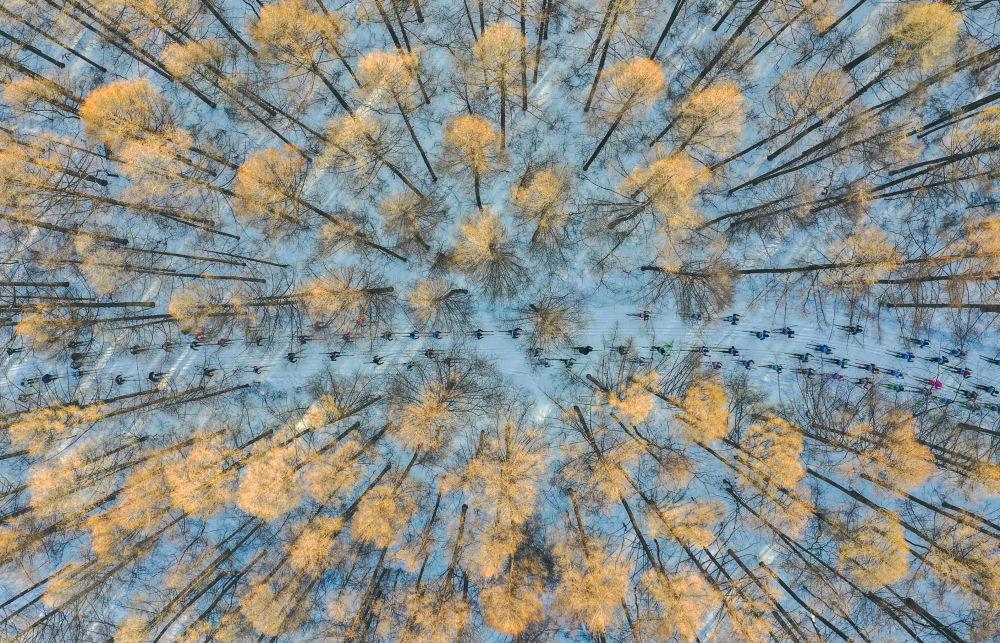 中國攝影師Chang XU拍攝作品《春天里的滑雪》入圍安德烈·斯捷寧攝影大賽「我的星球,單張作品」評選名單。