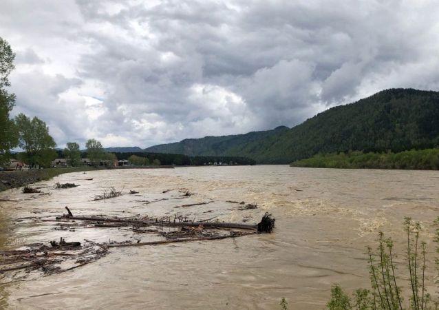 俄外貝加爾邊疆區一座連通6個村莊的橋梁因洪水垮塌