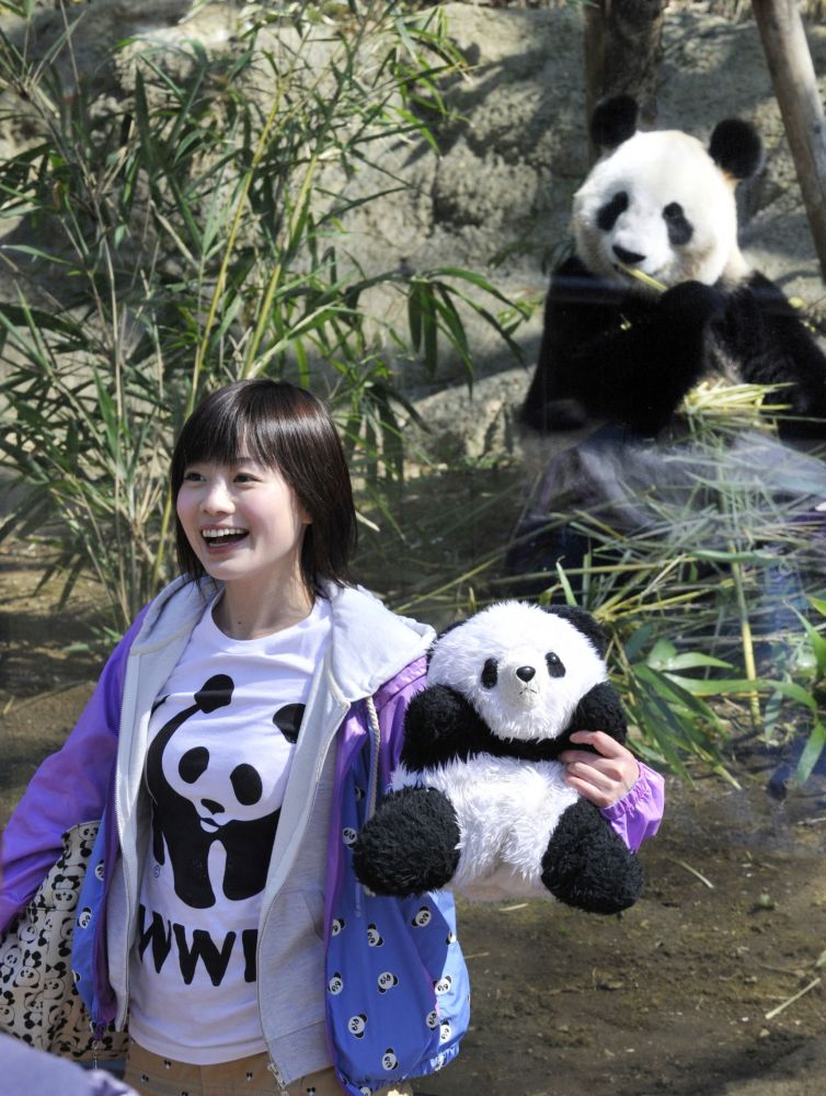 东京动物园喜迎大熊猫双胞胎幼崽