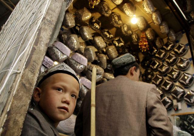 专家:展示新疆真相、讲好中国故事日益重要