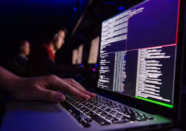 专家:俄美网络安全对话不应取代多边协议