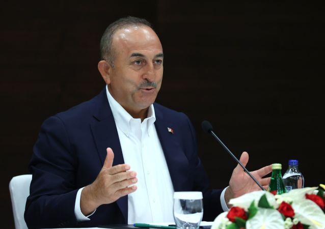 土耳其外交部:俄美未履行在叙利亚北部清除库尔德武装的义务
