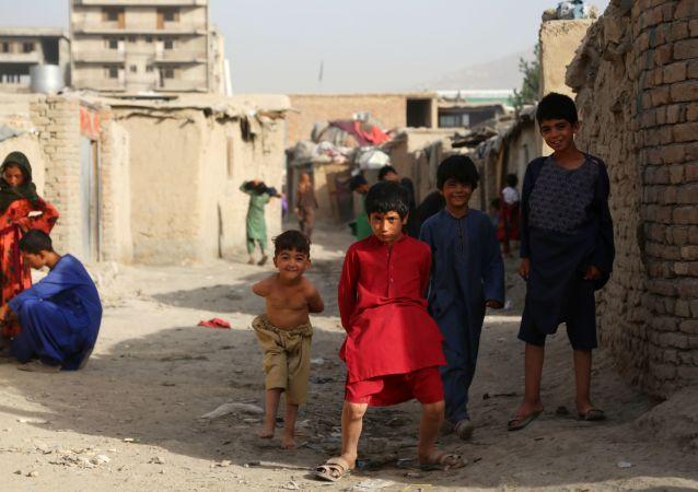 普京在东方经济论坛上称:阿富汗的局势是一场人道主义灾难