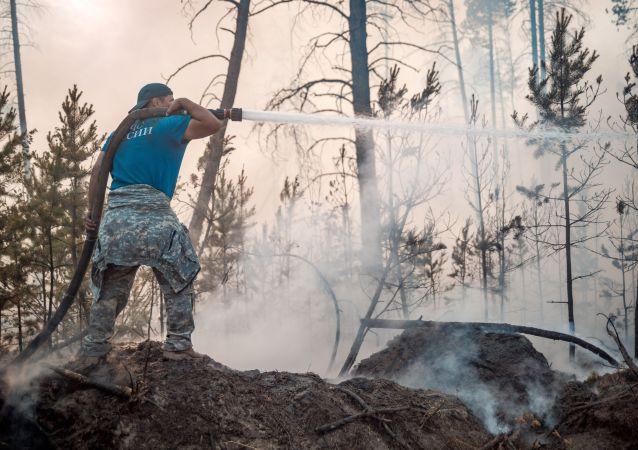 俄聯邦航空護林局:薩哈共和國在林火撲滅前將一直煙霧瀰漫