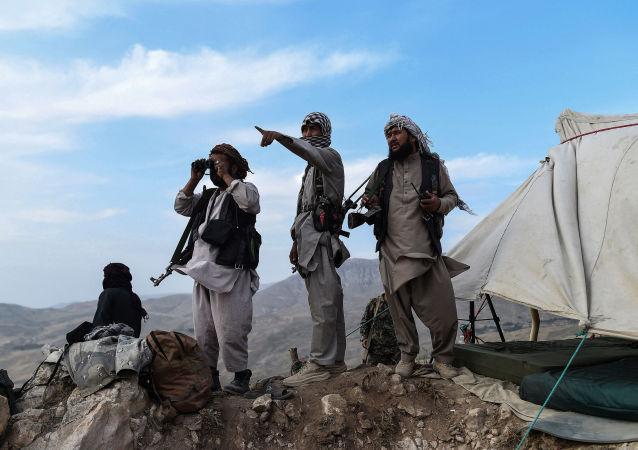 與美國合作過的阿富汗人因擔心受到塔利班報復向美國總統求助