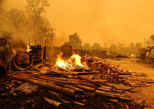 土耳其森林火災死亡人數升至8人