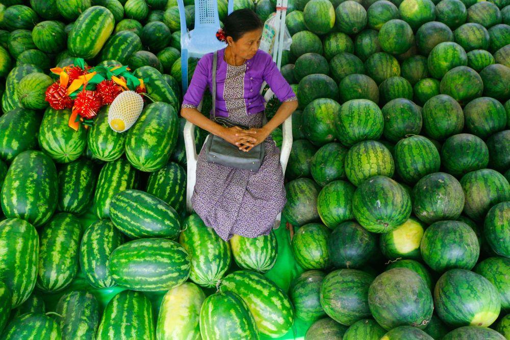 国际西瓜日:内红外绿