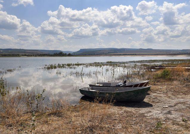 克里米亚指出切断半岛供水的主要组织者