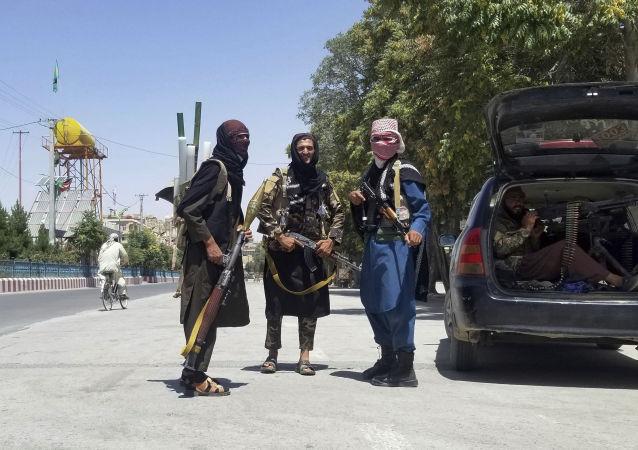 消息人士:塔利班佔領阿富汗烏魯茲甘省行政中心的大部分地區