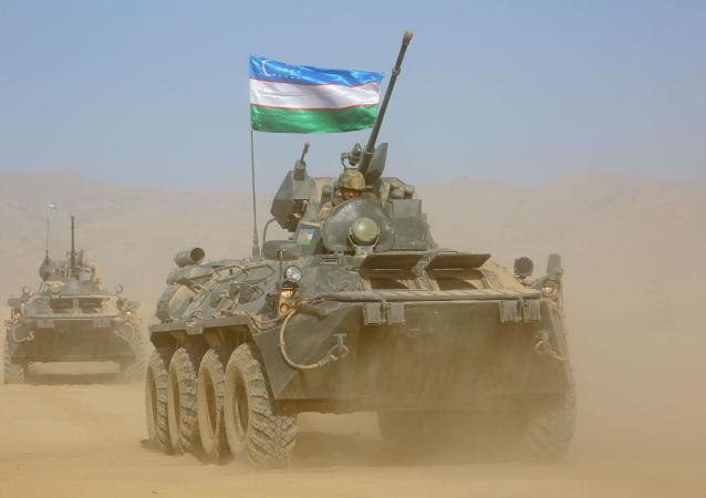 乌兹别克斯坦在与阿富汗交界边境进行集训