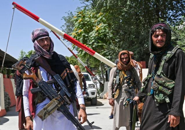 俄参议员:在政权更迭的情况下要与阿富汗理顺联络关系