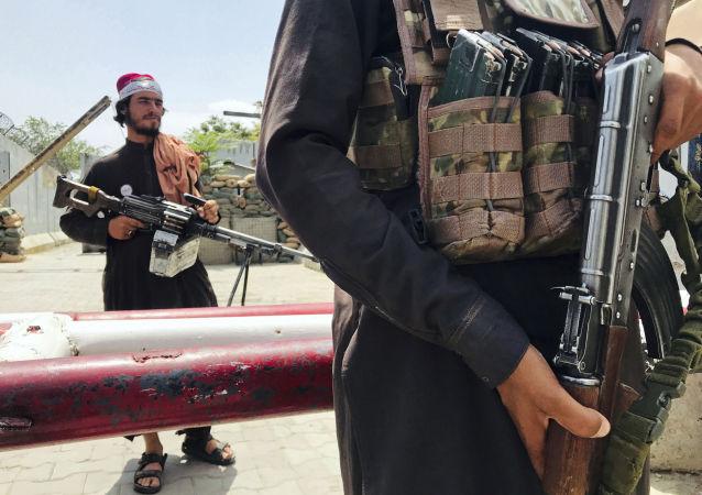 法媒:塔利班开枪驱散喀布尔反巴基斯坦抗议者