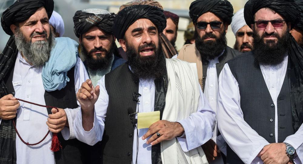 塔利班发言人扎比胡拉•穆贾希德