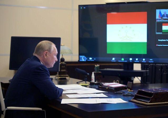普京以视频方式出席集安组织峰会