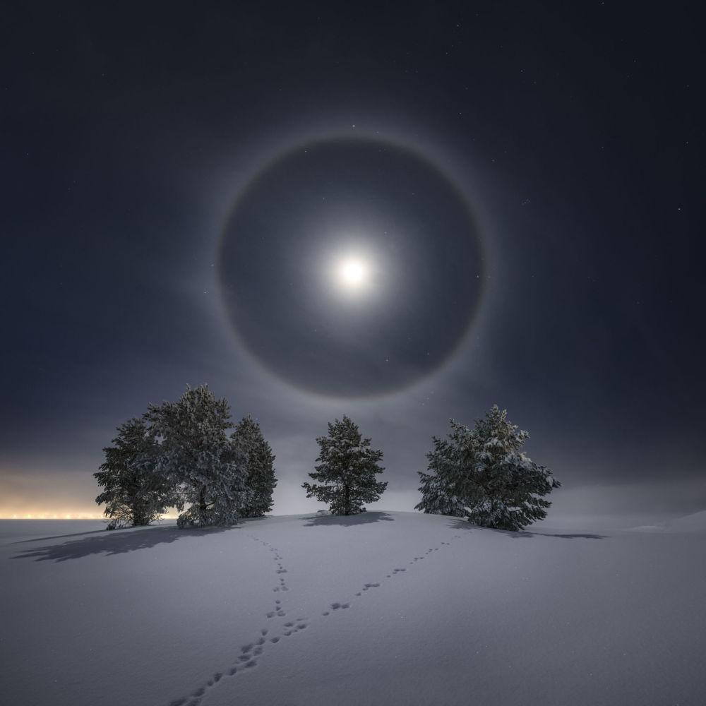 """瑞典摄影师约兰·斯特兰德拍摄的《月晕》获皇家天文台第十三届年度天文摄影师大赛""""我们的月亮奖""""第二名"""
