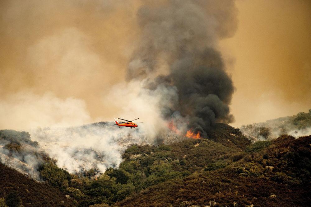 美国加州红杉国家公园发生火灾