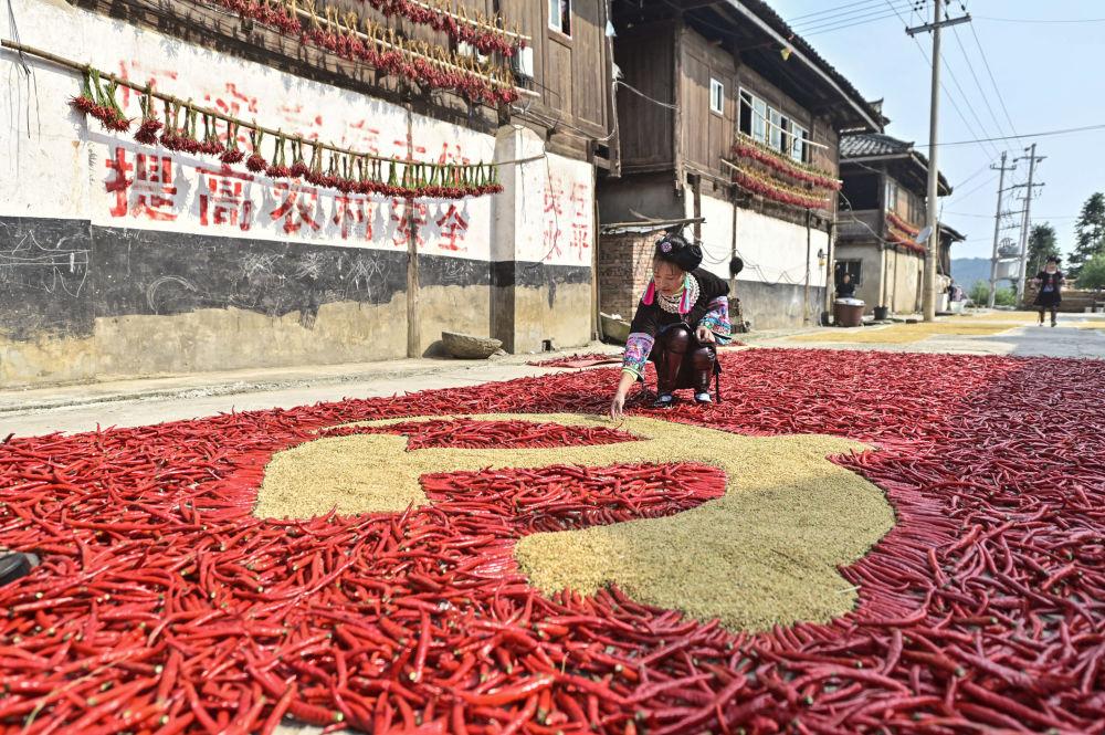 贵州女孩用玉米和辣椒摆出中国共产党党旗