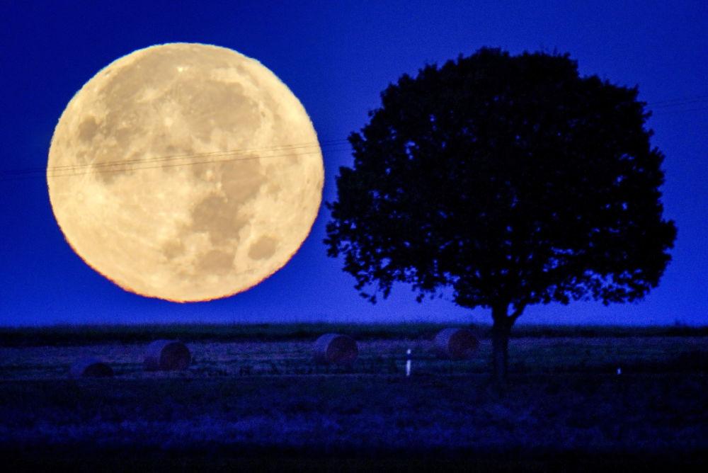 德國陶努斯山地區的滿月