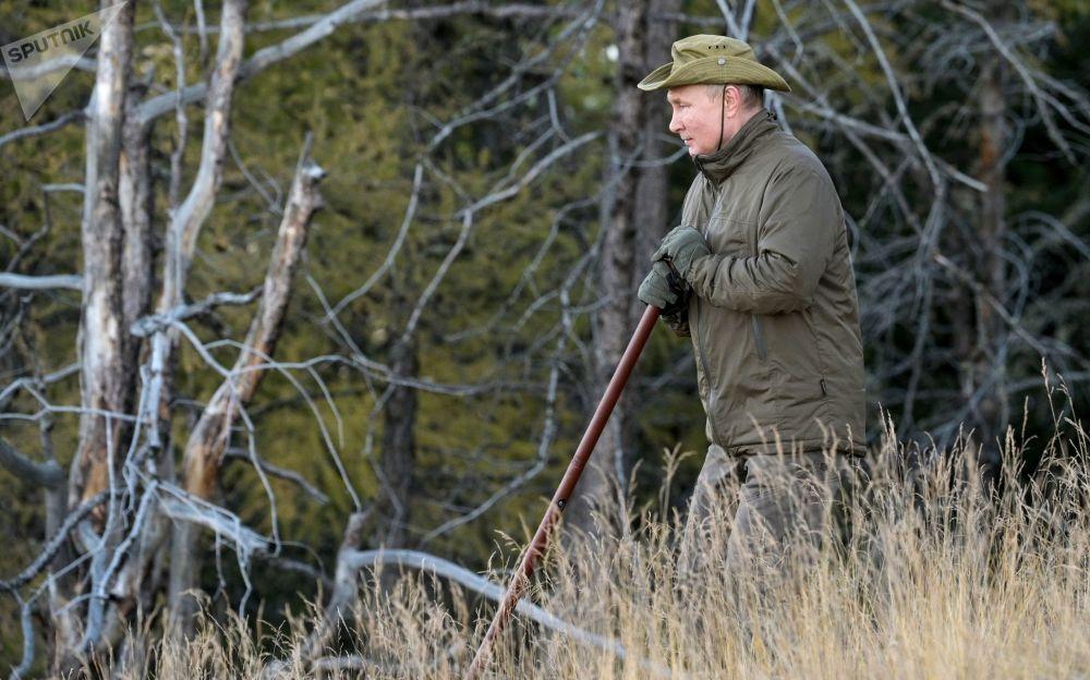 俄總統普京在原始森林中散步。
