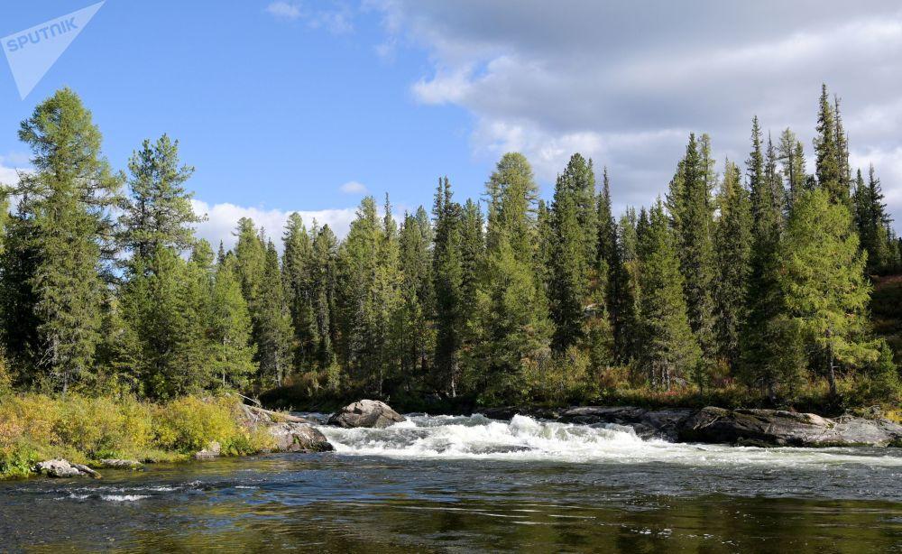 西伯利亞的自然風光。