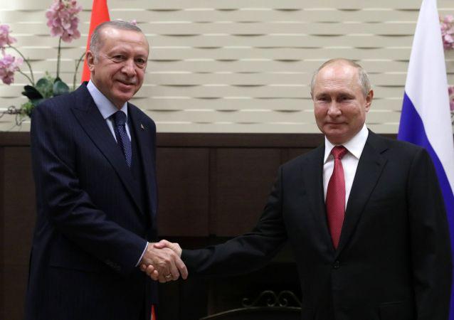 克宮:普京與埃爾多安昨日討論S-400等軍事技術合作問題