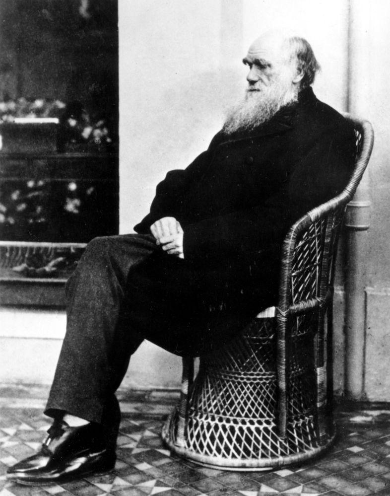 查尔斯•达尔文于50岁时在《物种起源》一书中发表进化论。