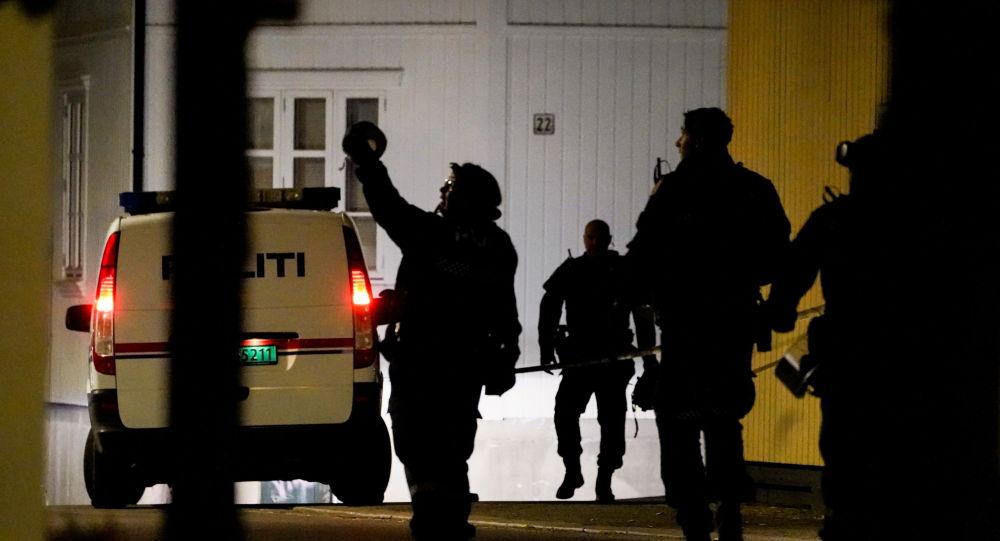 挪威警方指控37岁的丹麦男子制造弓箭袭击事件