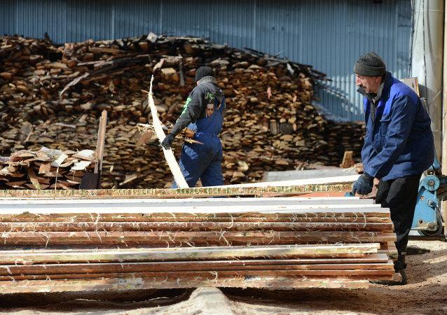 新加坡公司擬在俄濱海邊疆區投資2億美元建木材加工企業